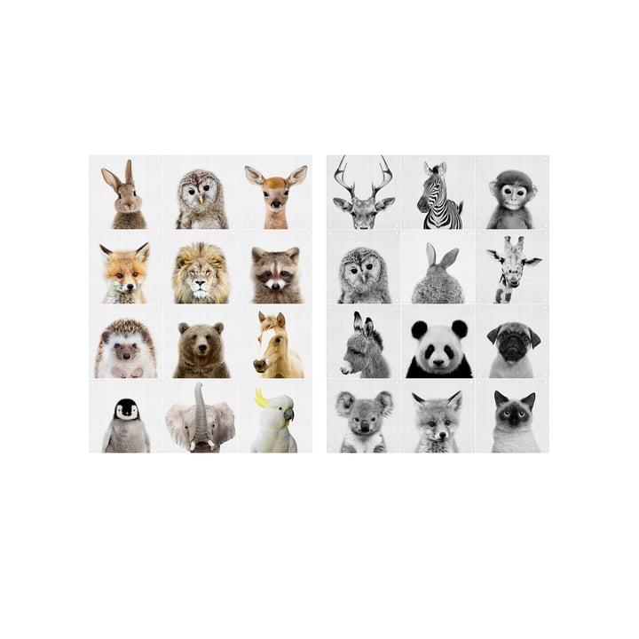 Animal Family wall motif by IXXI