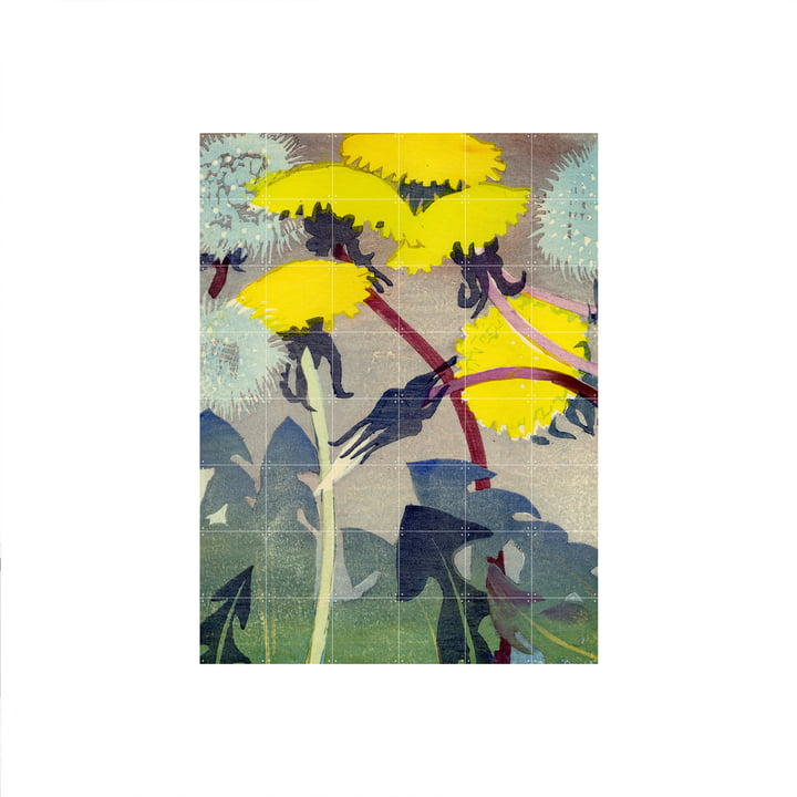 Dandelion ( Mabel Royds ) Poster of IXXI in 120 x 160 cm