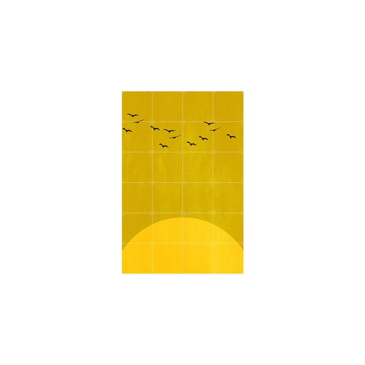 Sundance Poster of IXXI in 80 x 120 cm