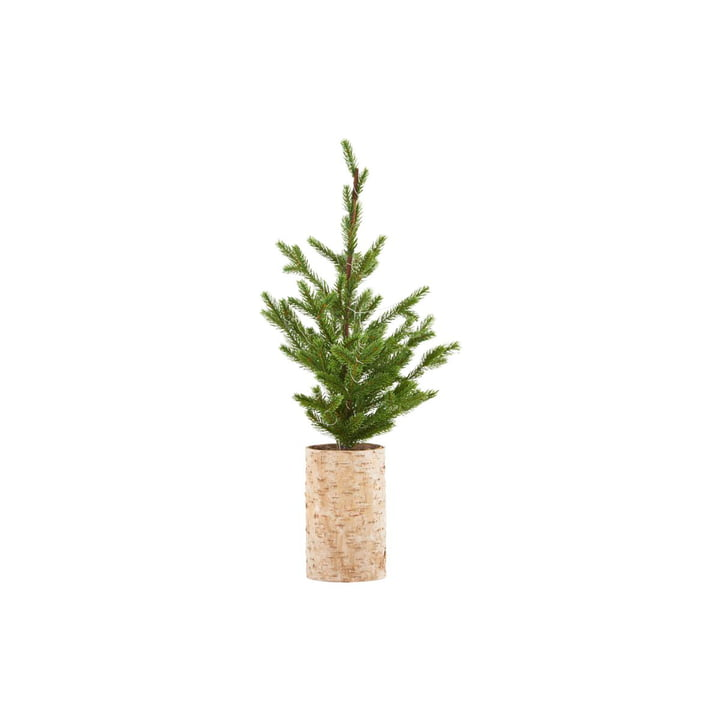 Christmas tree with LED lighting, H 64 cm from House Doctor