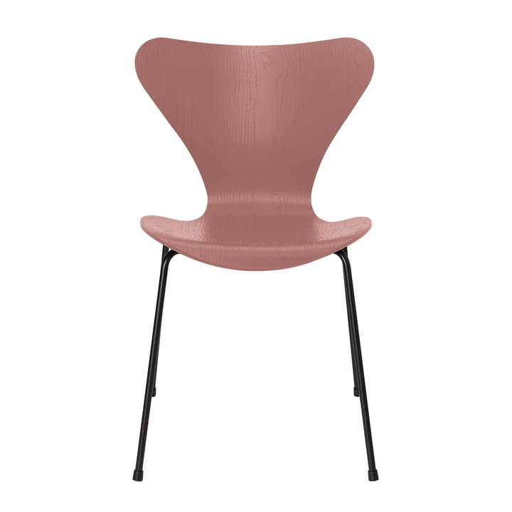 Series 7 chair by Fritz Hansen in wild rose colored ash / frame black