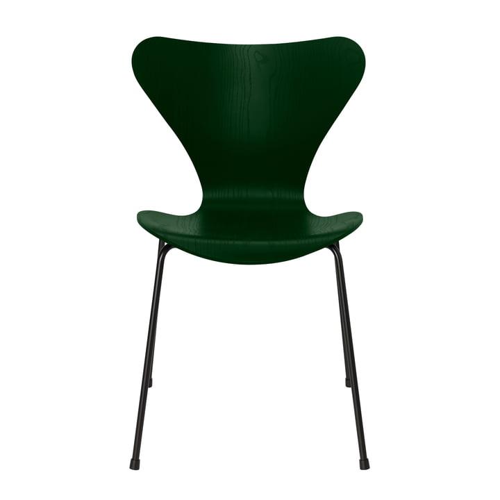 Series 7 chair by Fritz Hansen in evergreen ash / frame black