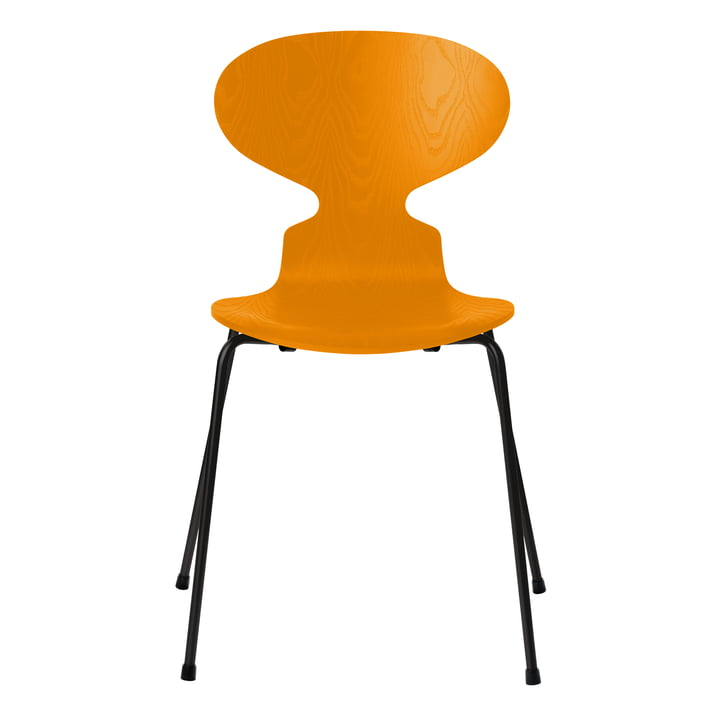 Ant chair by Fritz Hansen in burnt yellow colored ash / black frame