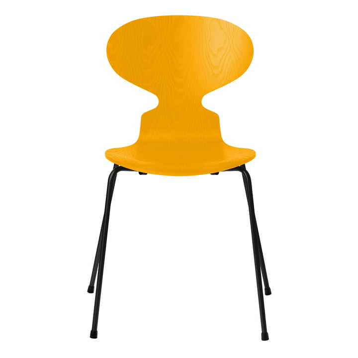 Ant chair by Fritz Hansen in true yellow colored ash / frame black
