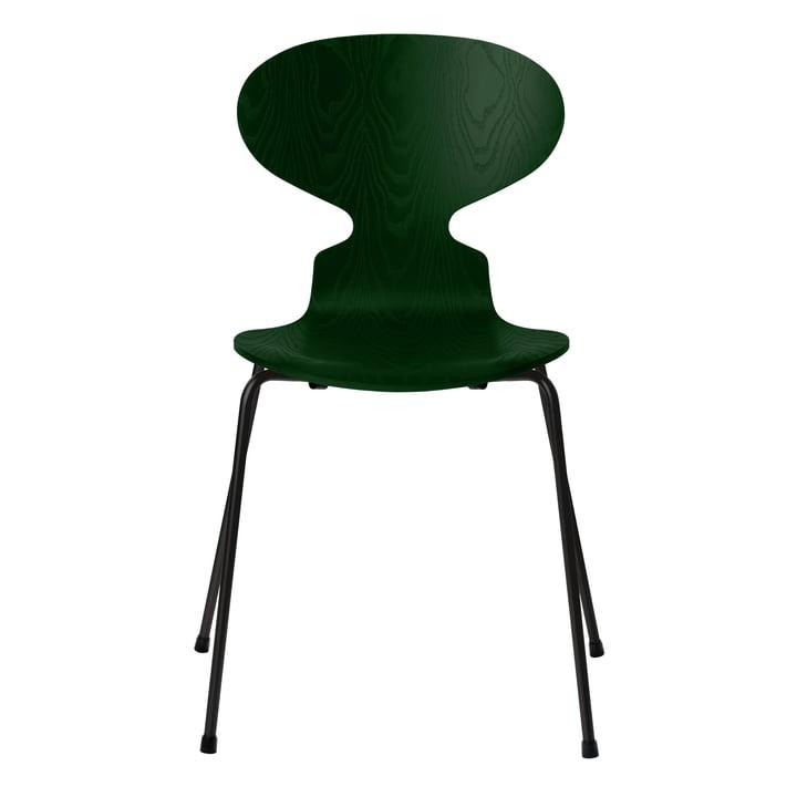 Ant chair by Fritz Hansen in evergreen ash / frame black