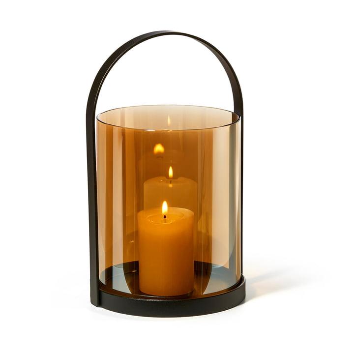 Honolulu lantern, golden yellow by Philippi