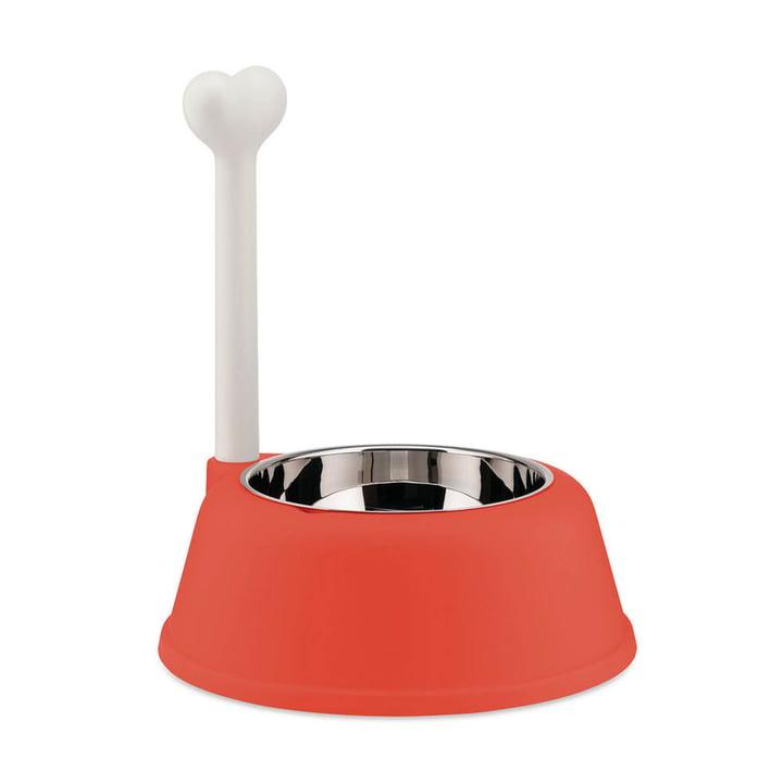 The Lupita dog bowl, red orange from Alessi