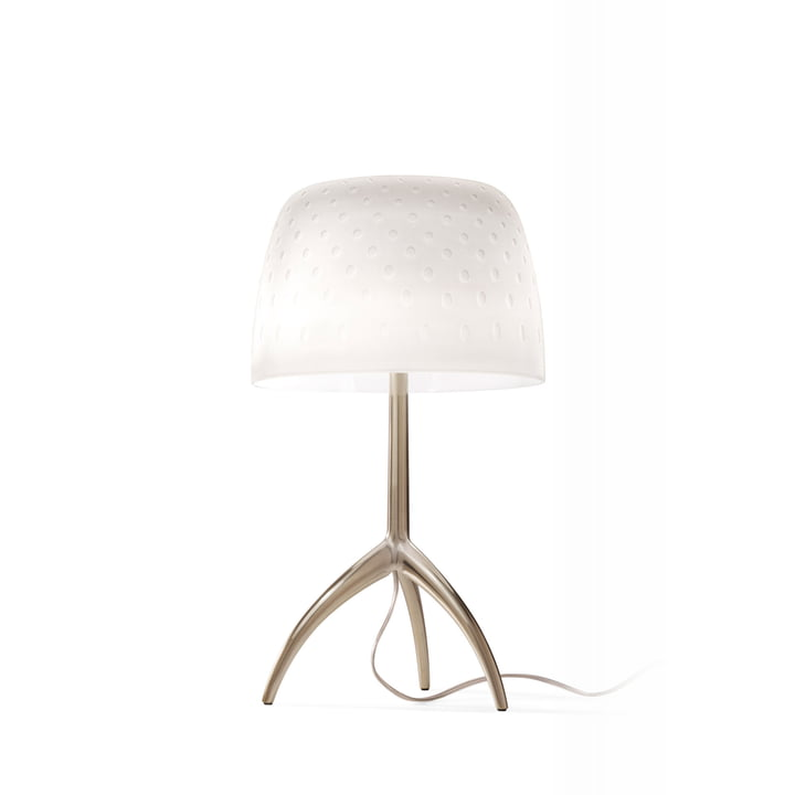 The Lumiere 30th piccola table lamp from Foscarini in champagne / bulles