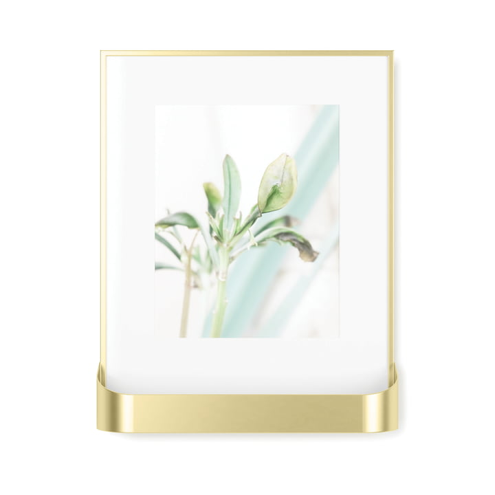 The Matinee picture frame with shelf from Umbra in brass, matt