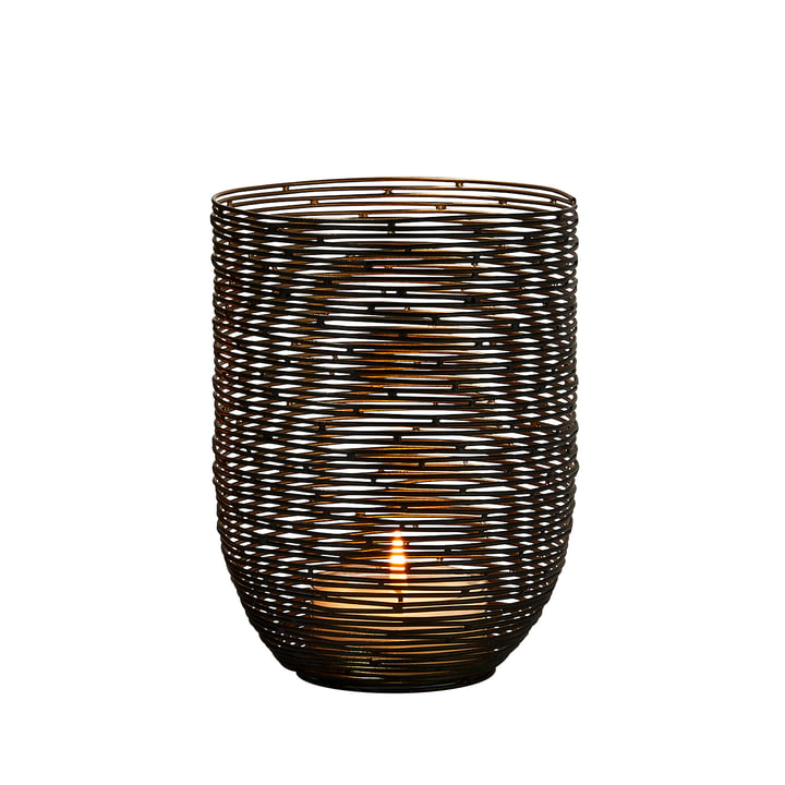 Windhuk Wind light S from Philippi in black / gold