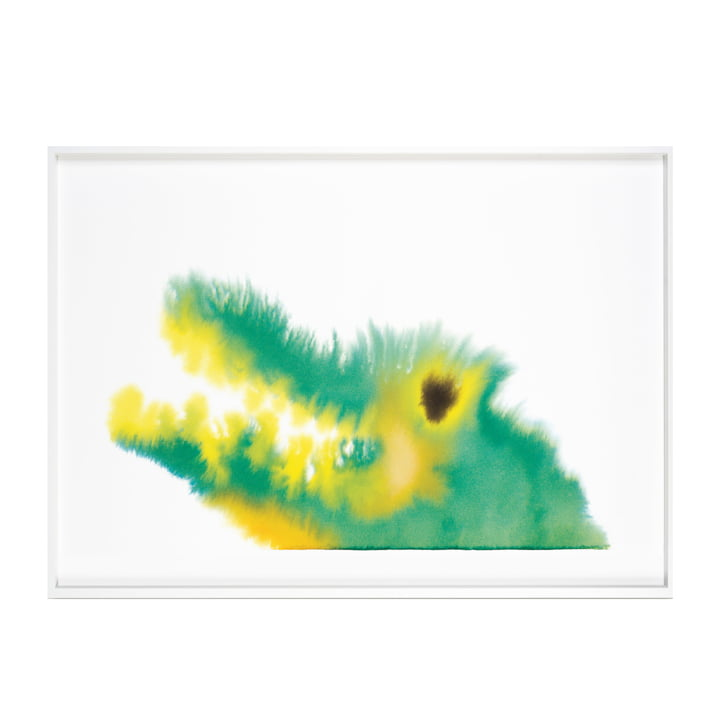 Crocodile poster with frame 52 x 69,8 cm from The Wrong Shop in multicolor