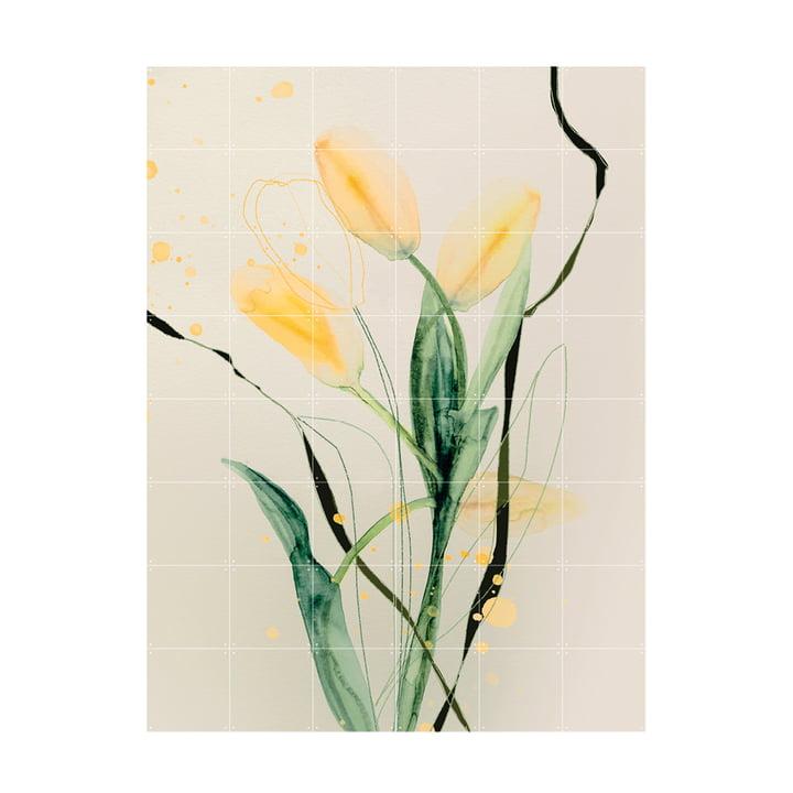 Tulip Jaune Mural 120 x 160 cm from IXXI