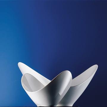 Rosenthal - Spirit Vase, 19 cm