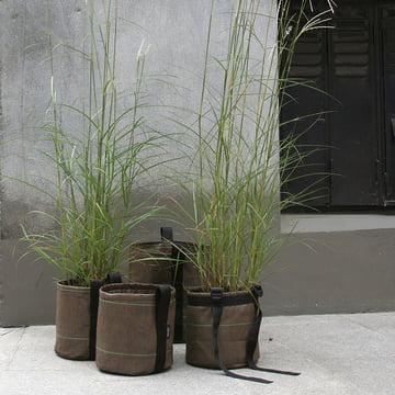 Bacsac Pot plant bag collection