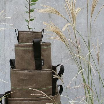 Bacsac Pot plant bags - detail