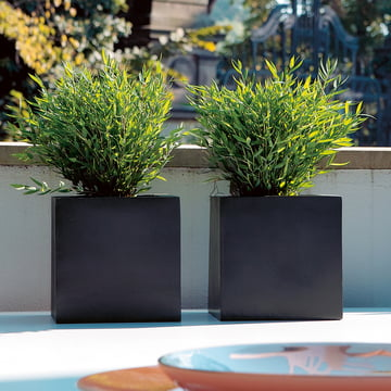 amei - The Cube Planter, atmosphere, black