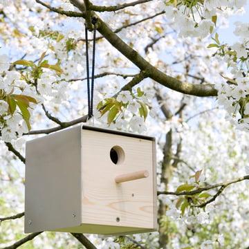 keilbach - twitter birdhouse, nature