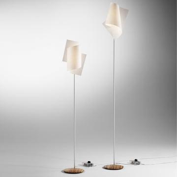 Domus - Loop Floor Lamp, zebrano