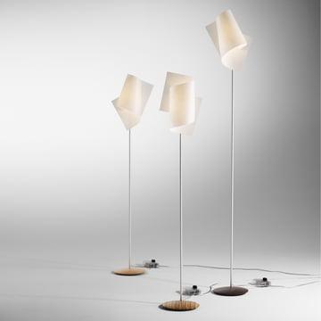 Domus - Loop Floor Lamp, zebrano, beech heartwood, walnut