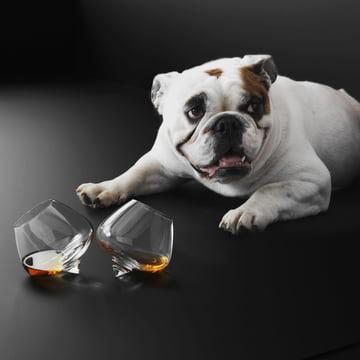 Normann Copenhagen - Cognac - Glass / Liqueur Glass