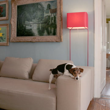 frauMaier - ThinLissie, red - ambience, living room - with dog