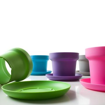 Authentics - Green plant pot - colours