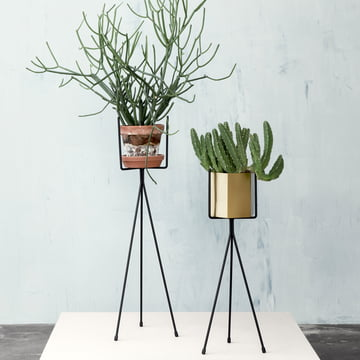 Black Plant Stand in Two Sizes