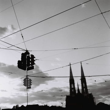 Lomography - 120 Earl Grey Negative Film - example