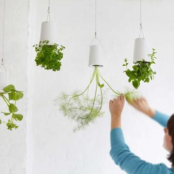 Boskke - Sky Planter Ceramic, hanging Herb Garden