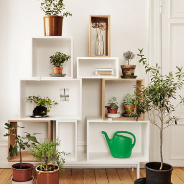 Muuto - Stacked shelving system - plants
