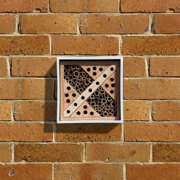 Wildlife World - Urban Bee Nester, Square