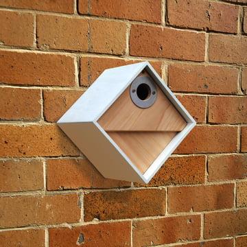 Wildlife World - Urban Bird Nestbox, Diamond 2