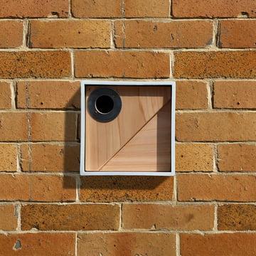 Wildlife World - Urban Bird Nestbox, Square