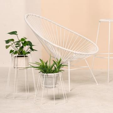 OK Design - Cibele Flowerpot Holder, white, Acapulco Chair, white