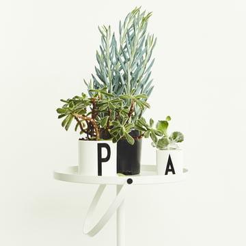 Green, greener, Design Letters