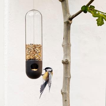 Birdseed in a tube