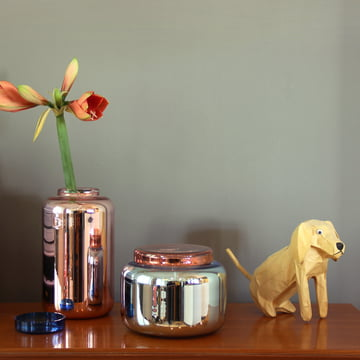 Low container vase by Pulpo: