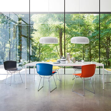 Knoll - Bertoia Plastic Chair