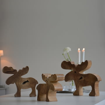 Jan Kurtz - Moose, teak