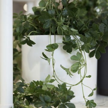 Menu - Cylindrical Planter