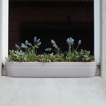 The windowgreen window sill Flower-Box by rephorm