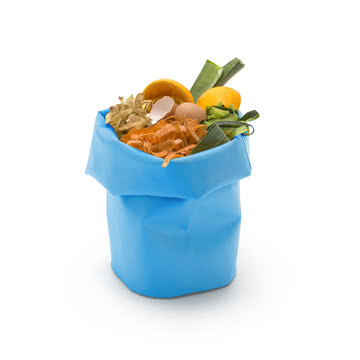 Bin for Disposal of Kitchen Waste