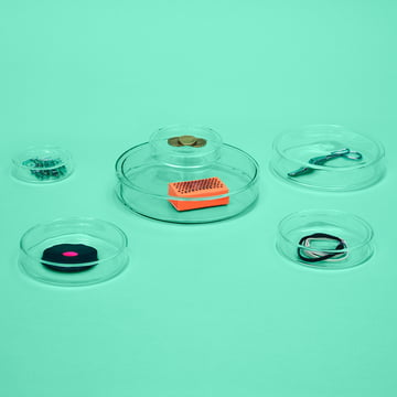 Small Glass Bowls with Lid