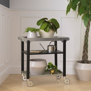 Anoon Tea Trolley and Rimm Flower Pot