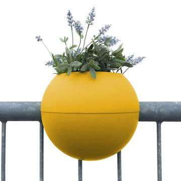 The rephorm - ballcony bloomball Planter