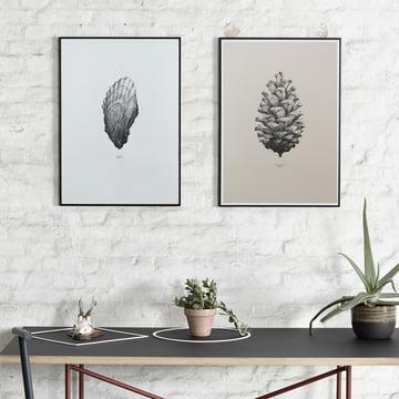 Paper Collective - Nature 1:1 Pine Cone (cream) / 1:1 Oyster (white)