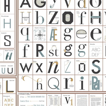 The Taxonomy of Typography by Pop Chart Lab