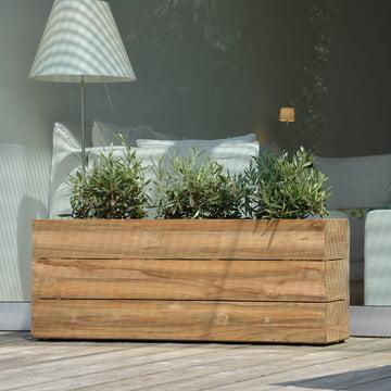 Planter Minigarden Jan Kurtz