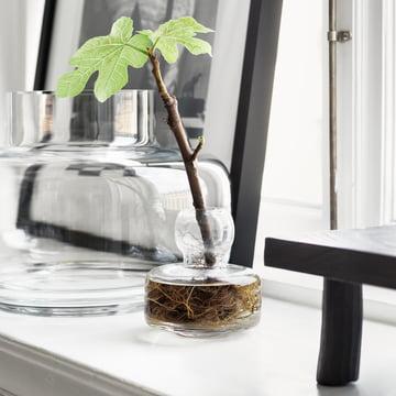 Urna and Flower Vase by Marimekko