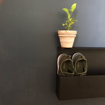 The Nichba design - Shoe Box Decorated with a Plant